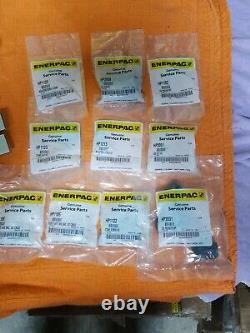 ENERPAC P202 Hand Pump With 8 Ton BHP Kit